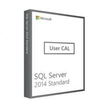 Licenza Microsoft SQL Server 2014 Standard User CAL