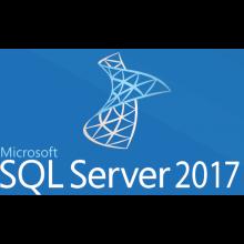 Microsoft SQL Server 2017 - licencia - 1 usuario CAL Volumen Single Language 1 usuario CAL